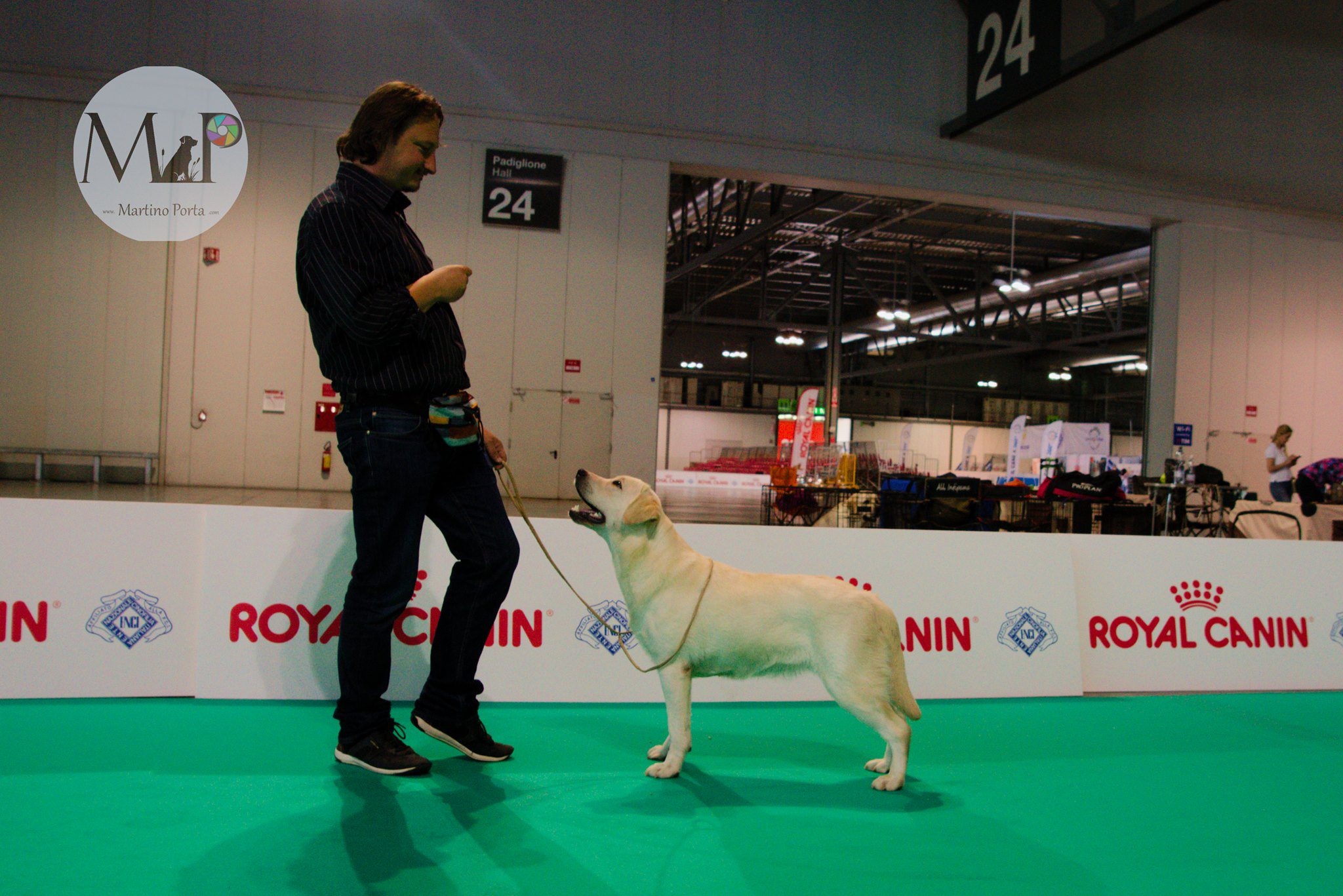 Martino Porta Bosco retriever Kennel